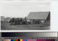 Farmhand with mule-team and wagon on the Phillips Ranch, Rolling Hills Estates...