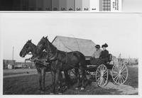 Harry F. Phillips and wife Mary Ann in horse-drawn buggy at the Phillips Ranch...