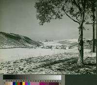 Palos Verdes College campus with snow