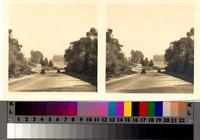 Automobiles on curve along Granvia La Costa, Palos Verdes Estates.