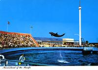 """Marineland of the Pacific"""
